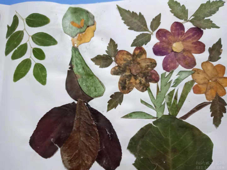 树叶贴画可爱小女孩的制作步骤图-编织乐论坛